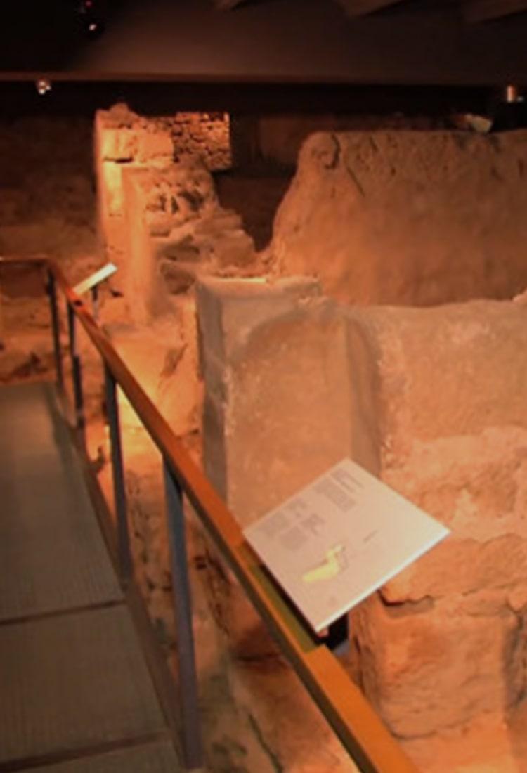 Museo de Historia de Barcelona - Orígenes de Europa