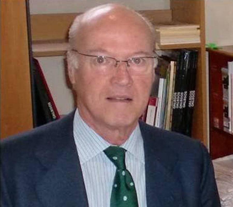 Mariano Seoánez Calvo - Orígenes de Europa