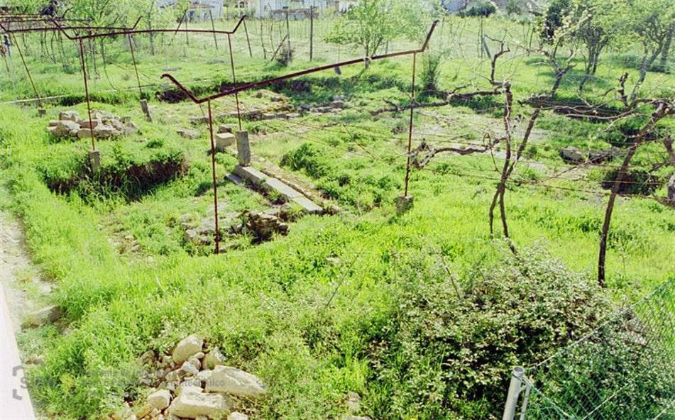 Restos arqueológicos de la basílica de S. Martinho de Dume, Orígenes de Europa